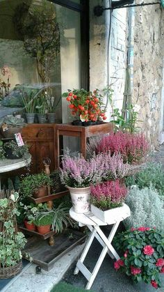 Garden Fall Planters, Garden Shop, Balcony Garden, Diy Garden Decor, Winter Garden, Flower Decorations, Garden Inspiration, Container Gardening, Outdoor Gardens