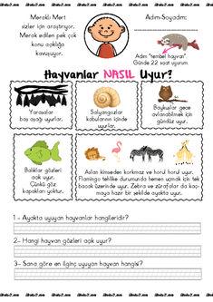 Meraklı Mert -8. Bölüm- Hayvanlar Nasıl Uyur? | Sınıf Öğretmenleri İçin Ücretsiz Özgün Etkinlikler Homeschool, Children, Turkish People, Young Children, Boys, Kids, Homeschooling, Child, Kids Part