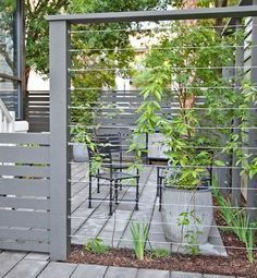 Front Garden Design Cable wires mounted between fence posts create a sturdy support for climbing plants providing privacy for your patio. Garden Privacy, Garden Fencing, Garden Trellis, Privacy Trellis, Trellis Fence, Privacy Screens, Trex Fencing, Plant Trellis, Wood Fences