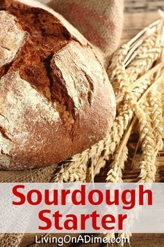 Sourdough Starter With Potato Flakes When I Was Much Younger I Was Quilting One Day With My Husbands Grandma Thompson Little Grandma We Called He