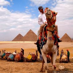 Overnight Trip to Cairo and Alexandria from Alexandria Port || Tour to Cairo and Alexandria from Alexandria Port to visit the highlights in both cities then back to Alexandria Port Whatsapp+201069408877 Email: Reservation@safagashoreexcursions.com Starting From : 175 $ #Safagaexcursions #Alexandria #Portsaid #Sokhna #Cairo #Pyramids #Luxor #Hurghada