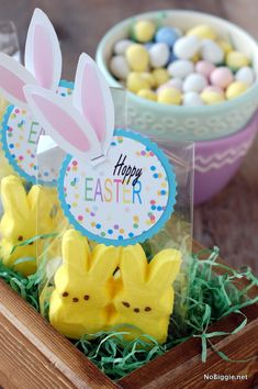 Happy Easter tags - (free printable) NoBiggie.net