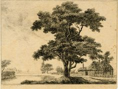George Simon, 2nd Earl Harcourt, Landscape with a tree in the centre foreground, river on the left and half-timbered, thatched cottage behind to right, 1764, Etching