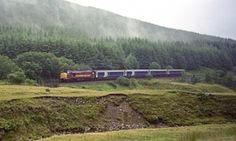 Catching the night train to the Scottish Highlands Bored by the four walls of his local in south London, Julian Coman caught the overnight train to Knoydart to enjoy spectacular scenery and a pint in one of Britain's most remote pubs