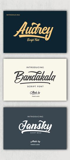 Awesome Font Bundle - Script Fonts