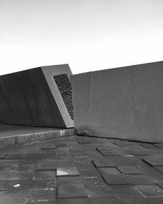 #minimal #modernist #Australian #architecture #victoria #bnw #blackandwhite #monochrome #design #exterior #landscape