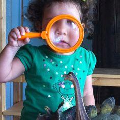 Birth of curiosity