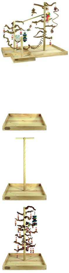 Perches 46291: Exotic Wood Xerch Perch | Bird Playstand, Parrot Play Stand, Bird Perch -> BUY IT NOW ONLY: $160.0 on eBay!