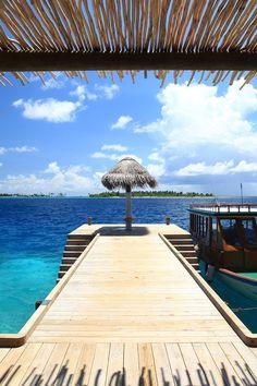 lux-clusive:  lux-clusive:      Laamu Resort Maldives / Source