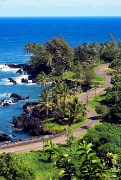 The road to Hana is a #Maui must do! http://tourmaui.com/driving-in-maui/