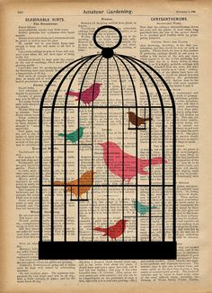 birds acuarela en diario - Book Pages Art