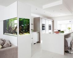 Schon Simple In Wall Fish Tank
