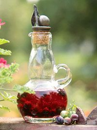 Blueberry Vinegar-great for gifts!