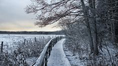 November Walk by Pajunen