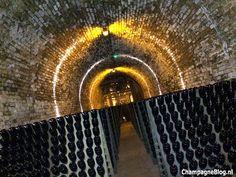 kelders van Krug #cellar #Krug #champagne #ChampagneBabes Krug Champagne, Cellar, Van, Vans, Vans Outfit