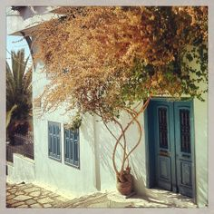 An almost Cycladic image from the narrow streets of Ano Poli. Walking Thessaloniki app, Route 11 - Upper Town C (Download for FREE) #travel #guide #iPhone Thessaloniki, Free Travel, Travel Guide, Greek, Walking, Photoshoot, App, Iphone, City