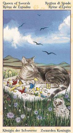 Queen of Swords ~ Tarot of the Pagan Cats deck
