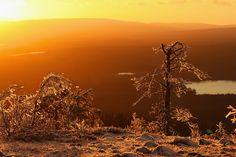 Auringonlasku Levitunturissa. Levi, finnish Lapland. Photo by @virpula1