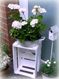 Old wine box embellished with white color - Garden Plants Container Gardening Vegetables, Container Plants, Garden Planters, Garden Art, Garden Gates, Back Gardens, Outdoor Gardens, Plant Painting, Ideias Diy