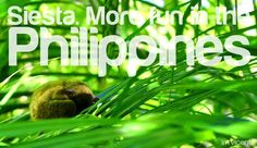 SIESTA. More FUN in the Philippines! #itsmorefuninthephilippines Philippines Tourism, Puns, More Fun, Places, Clean Puns, Funny Puns, Word Games, Lugares