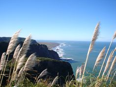 New Zealand --- This totally looks like Raglan -- about 20 min. away from my Nana and Granddad's house! (hamilton)