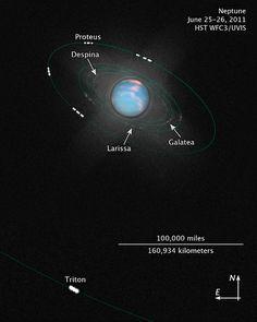 Names of Neptune's 13 Moons | Inner Moons of Neptune [illustration]
