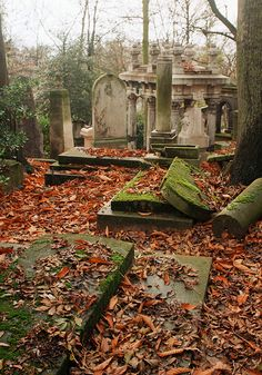 graveyards     #semiphoto I like the mysteriousness of graveyards, I quite enjoy photos of them in general. I particularly like how ancient and messy the graves in this photo look.
