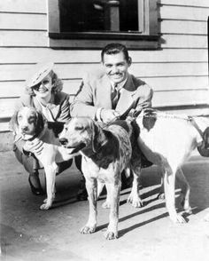Jean Harlow & Clark Gable were both dog lovers! Old Hollywood Glamour, Golden Age Of Hollywood, Vintage Hollywood, Classic Hollywood, Classic Actresses, Classic Movies, Dog Poster, Big Animals, Guys And Dolls