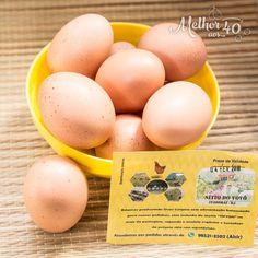 """Momento feliz! Hoje, eu comprei na feira, 3 caixas de ovos orgânicos do sorridente e simpático Alcir. Os ovos são produzidos no """"Sítio do…"""