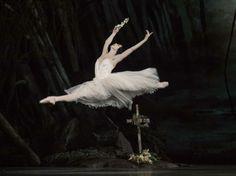 Natalia Osipova - On Giselle and dancing with The Royal Ballet at Covent Garden Royal Ballet, Alonzo King, Persian Princess, Ballet Photos, Ballet Pictures, Ballet Beautiful, Swan Lake, Ballet Dancers, Ballerinas