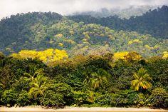 Vierzig Tage beschwerliche Reise durch die Wildnis Zentralamerikas, wozu?