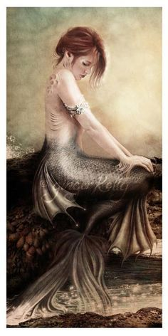 wow... I love this style Fantasy Mermaids, Mermaids And Mermen, Real Mermaids, Mythological Creatures, Fantasy Creatures, Magical Creatures, Mythical Sea Creatures, Ondine, Mermaid Tale