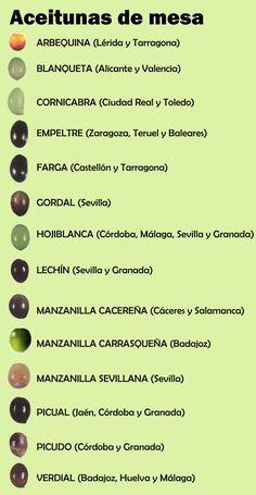 ACEITUNAS: Variedades - Localización