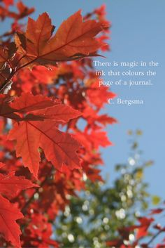 Journaling #journaling #quotes #colours #fall #writing #magic #inspiration