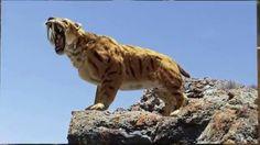 Los 5 Animales Extintos Que Podrían Volver A Tener Vida En Un Futuro - A...