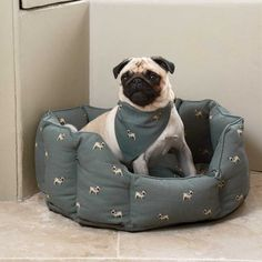 Sophie S Pug Collection Is Covered In This Popular Breed Of Dog On A Slate Blue Coloured Background Sometimes Referred To Dog Beds For Small Dogs Small Pet Bed