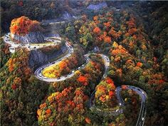"""Welcome to the Autumn Switchbacks in Chattanooga, Tennessee. According to """"Fall Into Adventure,""""Tennessee has the best Autumn then anywhere else in the U.S. Just taking a drive thru roads from Nashville to Memphis are apparently full of color, with oaks and maples still holding brilliant shades. Tennessee, The Unit, United States"""