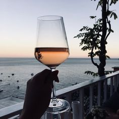 Imagem de drink, travel, and wine Disney Instagram, Instagram Girls, Roses Tumblr, Wine Photography, Valley Girls, In Vino Veritas, Foto Pose, Landscape Illustration, Illustration Art