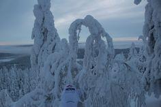 En Laponia
