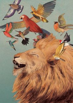 The Lion's Laugh by Lizzy Stewart