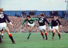 George Best torments Scotland defence Windsor Park 1967.