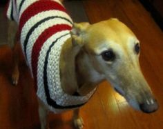 Dog sweater-hand knit dog sweater/all size dog coat/greyhound sweater/whippet sweater/pitbull coat/Shih tzu sweater/Pug coat/daschund coat