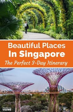 There are lots of things to do in Singapore if you love art and nature. Visit museums, galleries, trails and gardens with this 3-day itinerary to SIngapore. And get practical tips for for stay.