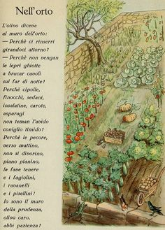 nell'orto Vintage Children's Books, Vintage Ephemera, Vintage Cards, Italian Alphabet, Cicely Mary Barker, Lost In Translation, Italian Language, Maria Montessori, Vintage School