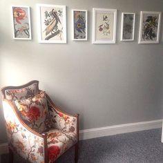 A bedroom R E F R E S H with A R T E M I S dove grey velvet. #hohxwilliammorris #artemis #upholstery #interiors  @katrosemul