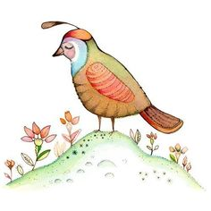 Just a birdie  Quail watercolor illustration by joojoo on Etsy, $15.00