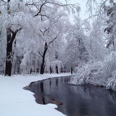 Iverson Park in Stevens Point, Wisconsin after a snowstorm. It looks like a fairy tale