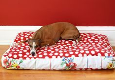 Hi guys! Today I am so excited to share one of my latest favorite projects with you for my pups. We go through at least a few dog beds a year in our house. Either they are not made well … Continued