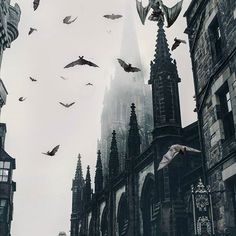 Looks like League of Extraordinary Gentlemen aesthetic vampire Login Gothic Aesthetic, Slytherin Aesthetic, Dark Castle, Arte Obscura, Vanitas, Gothic Architecture, Custom Trucks, Rc Trucks, Dracula