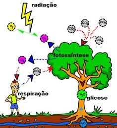 ciclo do oxigenio para colorir - Pesquisa Google